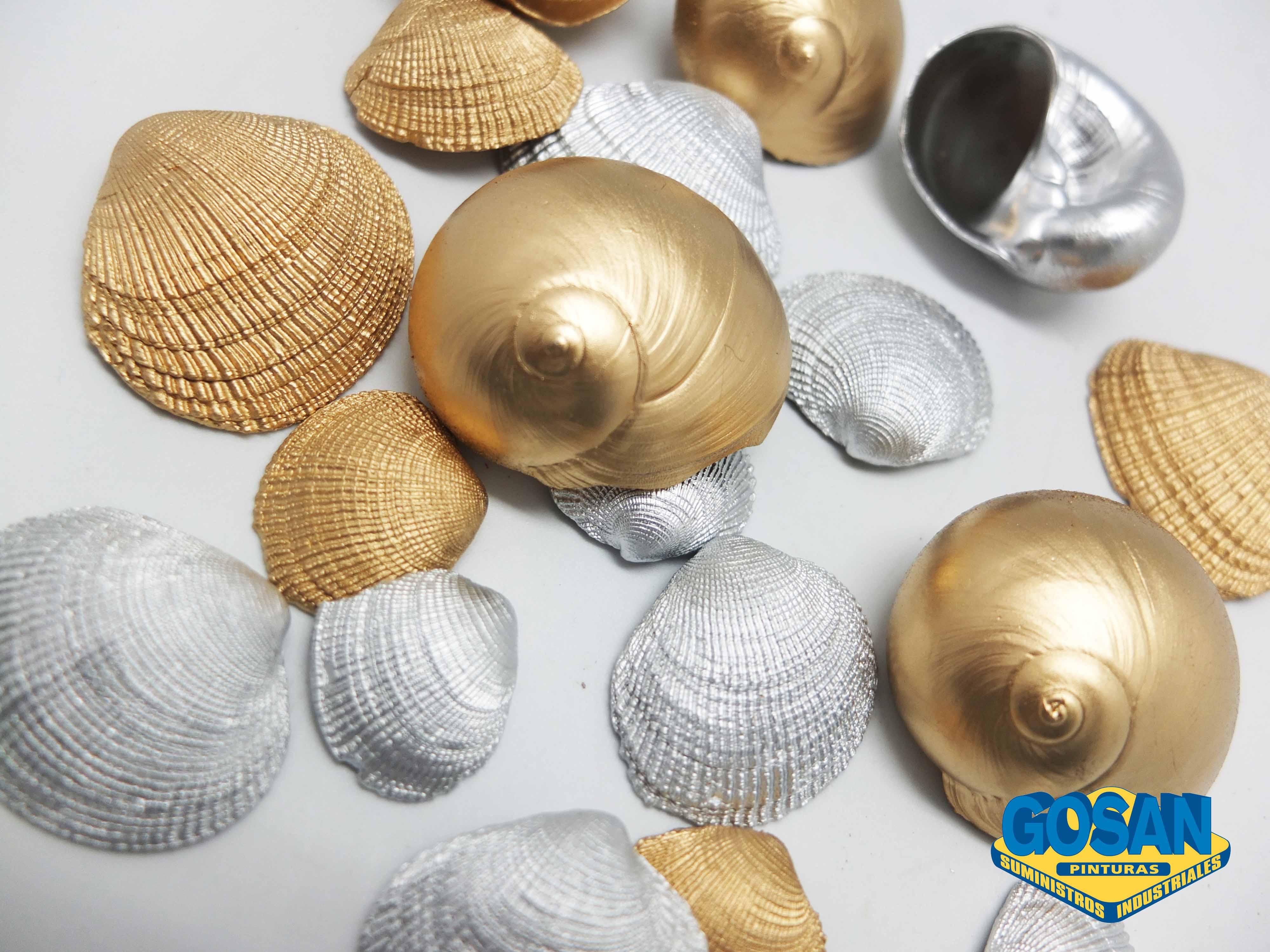 Pintar conchas de mar | Pinturas Coche, Interiores y Manualidades